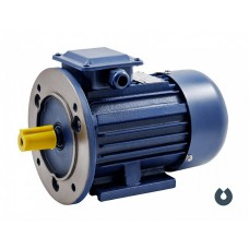 Электродвигатель АИР 71B6 IM2081(двигатель на лапах с подшипниковыми щитами и фланцем на одном подшипниковом щите) (0,55 кВт/1000 об/мин), шт  43507