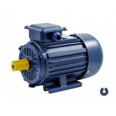 Электродвигатель АИP 100L6 IM1081 (2,2 кВт/1000 об/мин), шт  85169